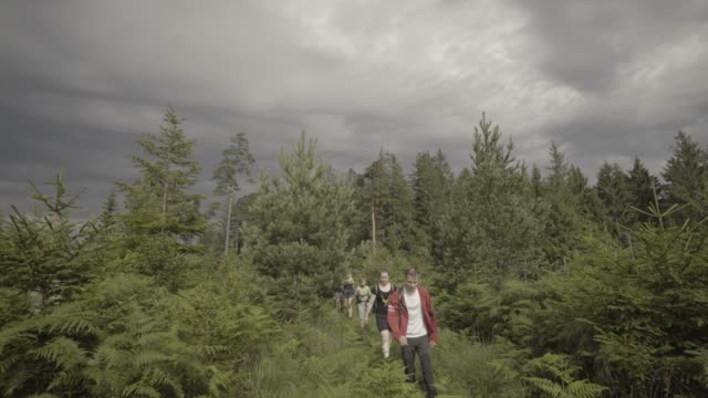 Group of young adults hike forest trail in single-file line