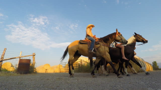 group of young cowboys and cowgirls riding horses - cowgirl stock videos & royalty-free footage