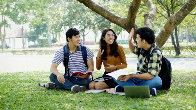 group of young happy college student hi five hands and enjoying sitting on grass in the park outdoors - southeast asia stock videos & royalty-free footage