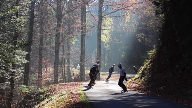 A group of young men ride their longboard skateboards downhill on a forest road in the fog.