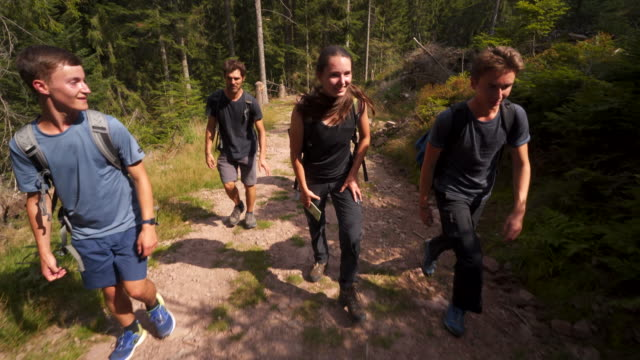 vídeos de stock e filmes b-roll de group of young teens hiking in the woods - 20 24 anos