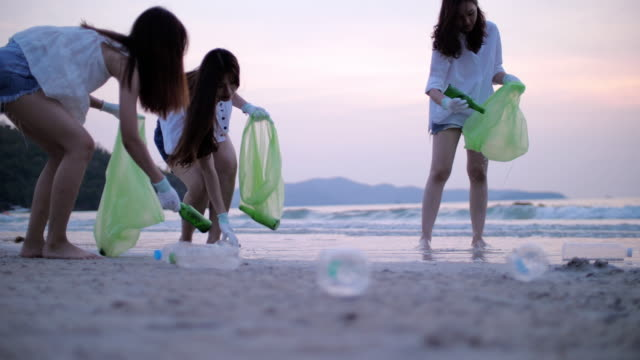 group of young woman picking up plastic bottles on the beach - altruism stock videos & royalty-free footage
