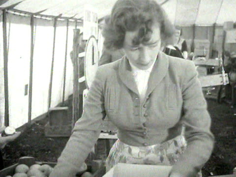 a group of young women take part in a timed apple wrapping competition at the marden fruit show in kent - wrapping stock videos and b-roll footage