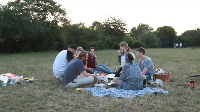 group of youngsters eating food on a summer day picnic - fleischzange stock-videos und b-roll-filmmaterial