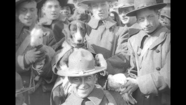 vidéos et rushes de group shot of excited us troops waving while on ferry on their way home from the mexican punitive expedition / group of soldiers; some hold dogs,... - première guerre mondiale