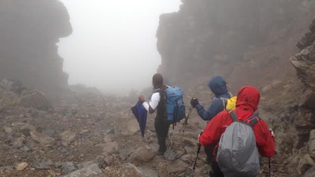 group walking slowly down terrain - wiese stock videos & royalty-free footage