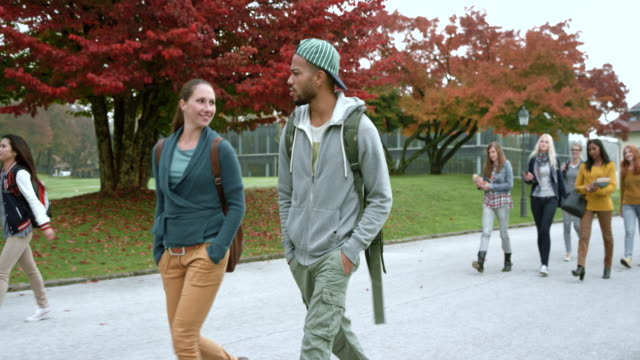 groups of students walking on campus on a misty fall morning - città universitaria video stock e b–roll