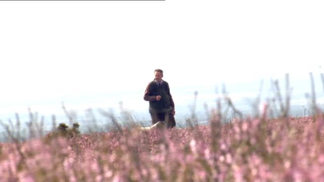 stockvideo's en b-roll-footage met grouse hunting on the yorkshire moors various of grouse hunting party on the moors / grouse shooter in shooting position loading and firing shotgun /... - vogeljacht