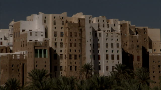 A grove of palm trees frames the town of Shibam Yemen.
