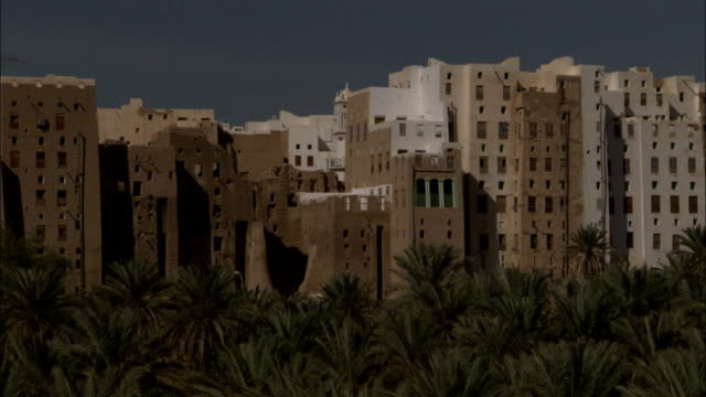 a grove of palm trees frames the town of shibam yemen. - yemen stock videos and b-roll footage