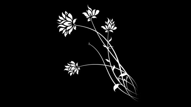 growing floral b&w - plant stem stock videos & royalty-free footage