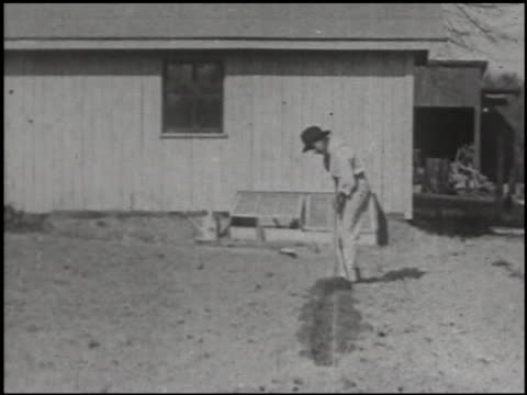 growing things: a film lesson in 'nature study' - 2 of 10 - anno 1928 video stock e b–roll