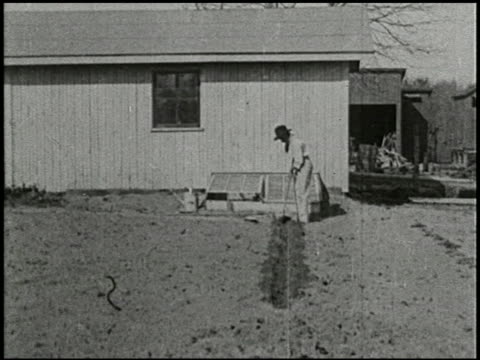 growing things: a film lesson in 'nature study' - 2 of 8 - anno 1928 video stock e b–roll