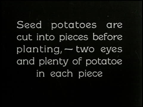 growing things: a film lesson in 'nature study' - 3 of 8 - anno 1928 video stock e b–roll