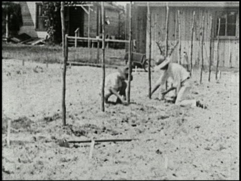 growing things: a film lesson in 'nature study' - 4 of 8 - anno 1928 video stock e b–roll