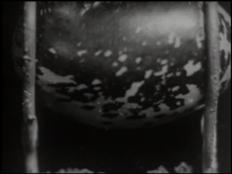 growing things: a film lesson in 'nature study' - 6 of 10 - anno 1928 video stock e b–roll