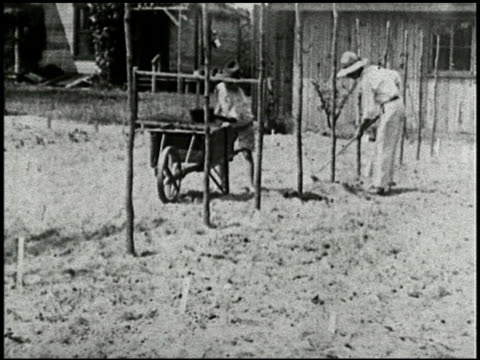 growing things: a film lesson in 'nature study' - 7 of 8 - anno 1928 video stock e b–roll