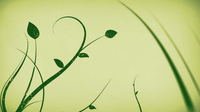vídeos y material grabado en eventos de stock de vines b-loop crecimiento - diseño floral