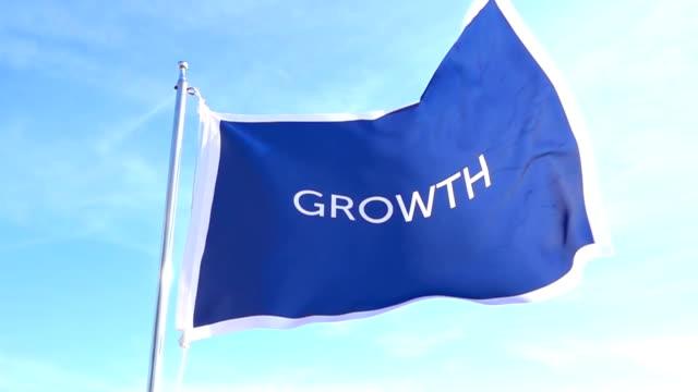 vidéos et rushes de indicateur de croissance - politique et gouvernement