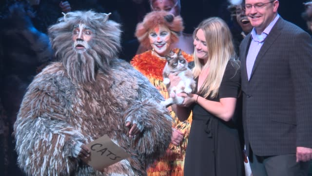 atmosphere grumpy cat visits the broadway cast of cats at neil simon theatre on september 30 2016 in new york city - broadway manhattan stock videos & royalty-free footage