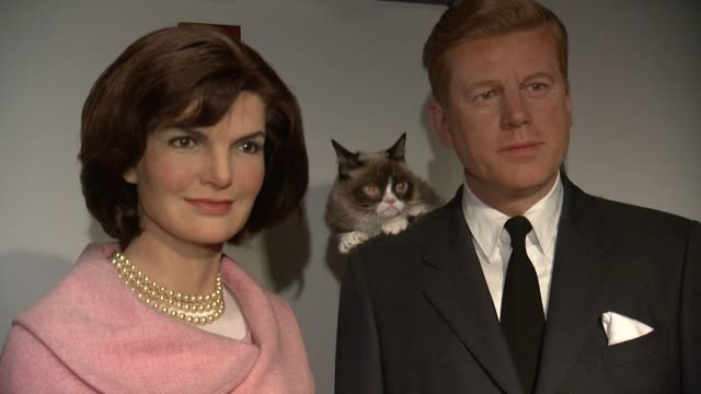 a080c00d58e Grumpy Cat with wax figure of Jacqueline Kennedy and John F. Kennedy...  Stock Footage Video