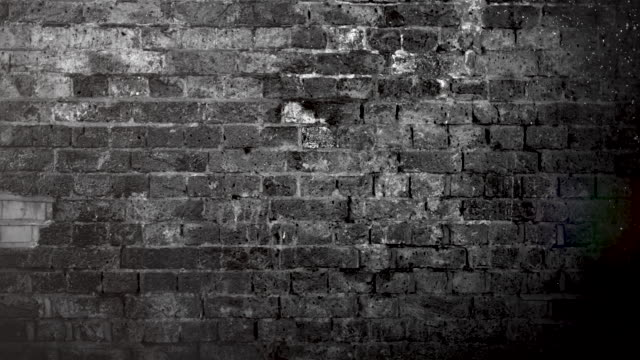 grunge black and white brick wall brackground. 4k stock video - backgrounds stock videos & royalty-free footage