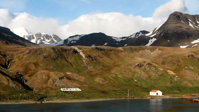 pan of grytviken bay with whaling station and graveyard, grytviken, south georgia and the south sandwich islands - valfångst bildbanksvideor och videomaterial från bakom kulisserna