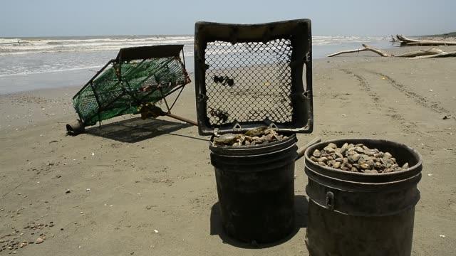 guacuco and crab fisherman. - 男漁師点の映像素材/bロール