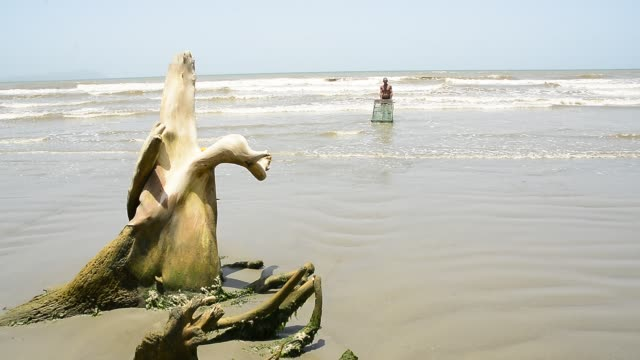 guacuco and crab fisherman. - カニ捕り点の映像素材/bロール