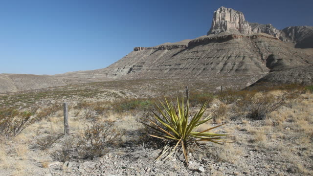 guadalupe mountains national park - wide shot stock videos & royalty-free footage