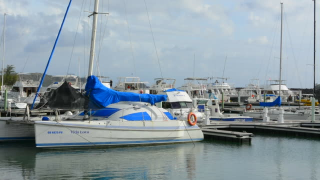 guam usa territory marina with boats in hagatna capital - guam stock videos and b-roll footage