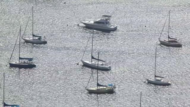 vidéos et rushes de ws guanabara bay with boats / rio de janeiro, brazil - groupe moyen d'objets