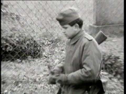 guard dog chained to fence on east side of berlin wall / guards on patrol of cemetery / guards seen through barbed wire fence. report on the berlin... - barbed wire stock videos & royalty-free footage