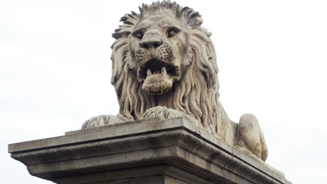 guardian lion at the chain bridge in budapest - hungary stock videos & royalty-free footage