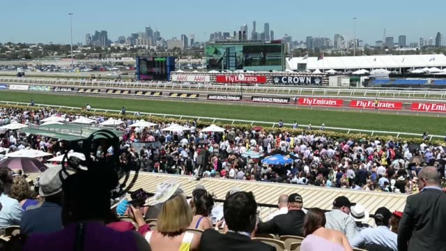 vídeos y material grabado en eventos de stock de guests of the lexus marquee drink champagne and consult the form guide in the bird cage section of flemington race course on melbourne cup day in... - apuestas deportivas