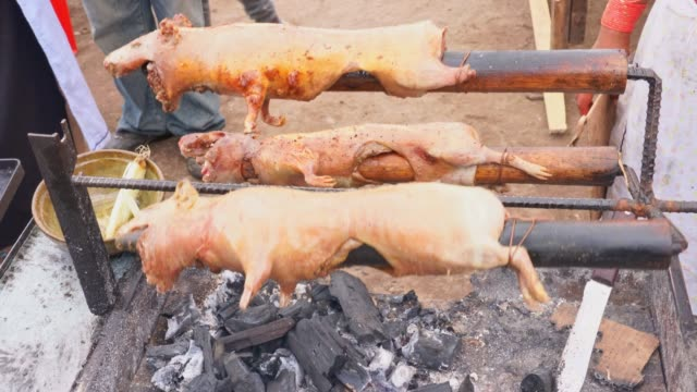 guinea pigs on bbq - ecuador stock videos & royalty-free footage