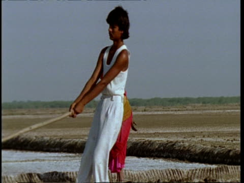 ms gujarat, indian woman turning soil with foot, man moves through foreground with hoe, gujarat, india - グジャラート州点の映像素材/bロール