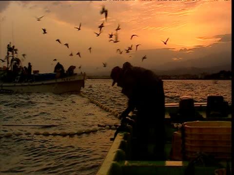 vídeos de stock, filmes e b-roll de gulls and fishermen at sunset, japan - indústria da pesca