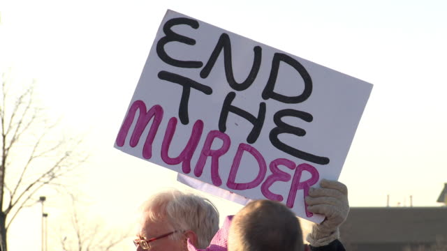 gun control advocates protest at the nation's gun show at the dulles expo center on december 28, 2012 in dulles, virginia - 自衛点の映像素材/bロール