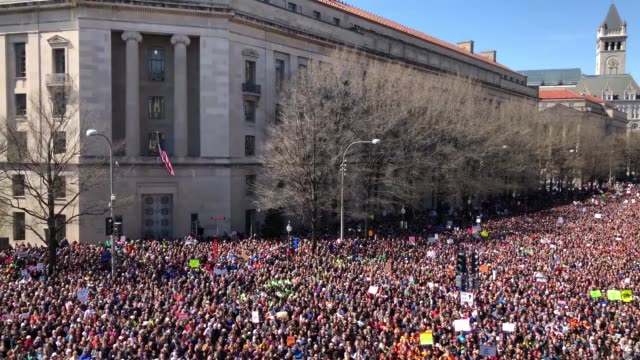 gun reform advocates line pennsylvania avenue while attending the march for our lives rally march 24 2018 in washington dc hundreds of thousands of... - controllo delle armi da fuoco video stock e b–roll