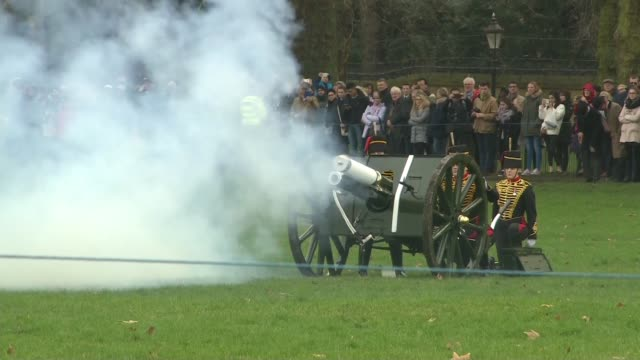 gun salute to mark 67th anniversary of queen's accession to the throne england london green park ext various of the king's troop royal horse... - royal horse artillery stock videos and b-roll footage