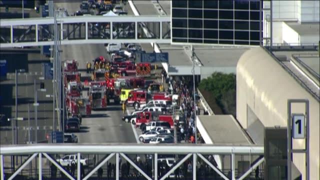 Gunman Kills TSA Agent Injures Others at Los Angeles International Airport on October 31 2013 in Los Angeles California