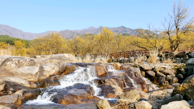 vídeos de stock e filmes b-roll de guryegun valley and cornus officinalis in jeollanam-do province, south korea - cornus