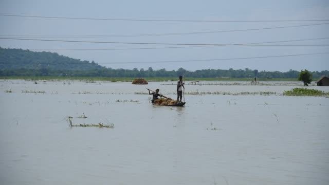 stockvideo's en b-roll-footage met guwahati assam india 29 may 2020 farmers carries paddy wade through flood water in boat at mayong village in morigaon district of assam friday may 29... - strohoed
