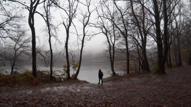Guy walking through beautiful autumn beech forest under the rain in the Catalan mountains