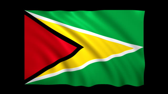 guyana flag loopable alpha included - stock video - national flag stock videos and b-roll footage