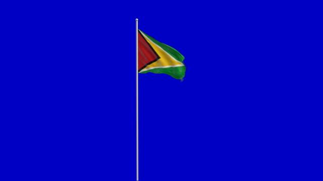 Guyana Flagge Rising