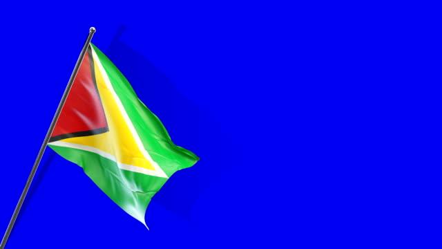 guyana flag rising - guyana stock videos & royalty-free footage