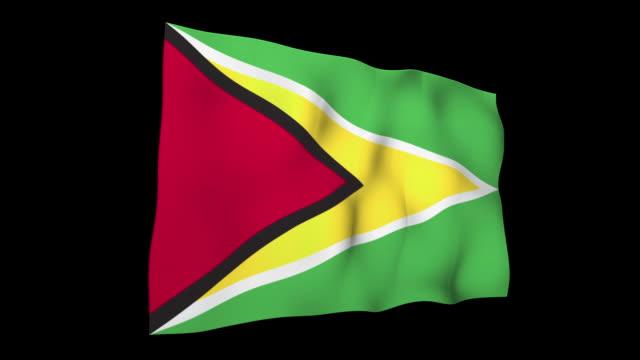 guyana flag - guyana stock videos & royalty-free footage