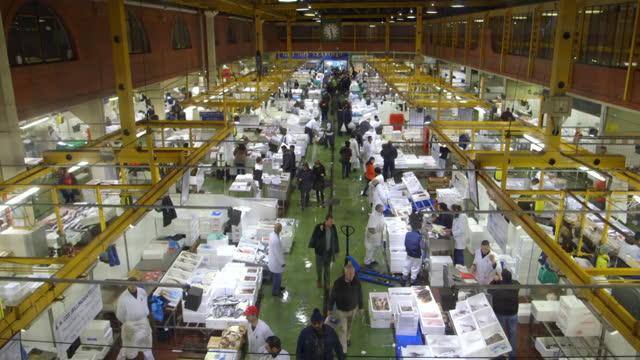 gvs billingsgate fish market, london - general view stock videos & royalty-free footage